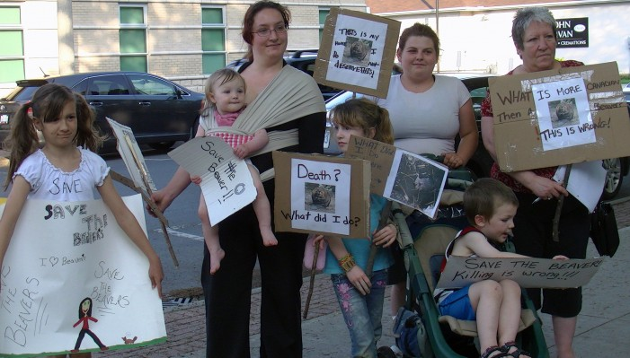 Beavergate in Cornwall Ontario – Protesters Refused to Speak at City Council – March on Council – May 15, 2012