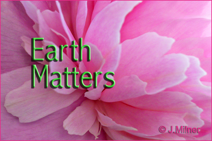 Earth Matters by Jacqueline Milner –  Co-flourish Should be an Official Word – June 1, 2012