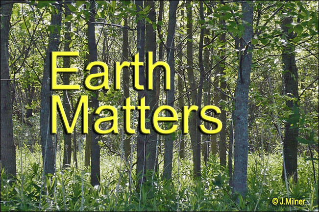 Earth Matters by Jacqueline Milner – Save Money and Improve the Environment!  June 22, 2012