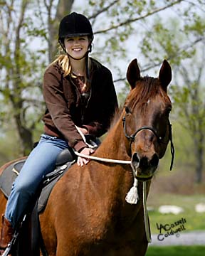 Spirits in Unity Column 4 by Garry Meek – Hurting Humans Help Hurting Horses