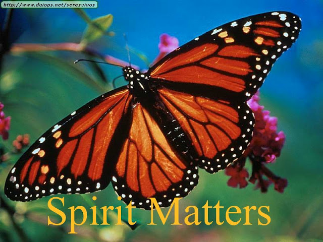 Spirit Matters by Shirley Barr:  Personal Transformation – Part 1   June 3, 2012
