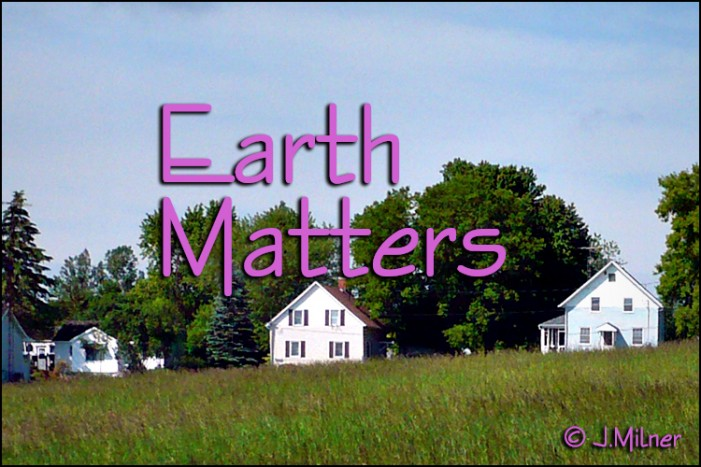 Earth Matters by Jacqueline Milner – Local Home Made Popsicles !  July 22, 2012
