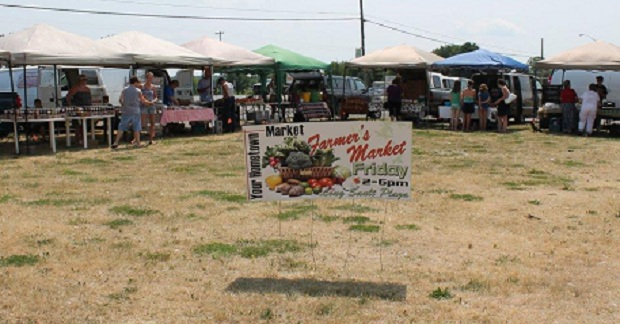 Long Sault Farmer's Market Report for August 3, 2012 by Reg Coffey