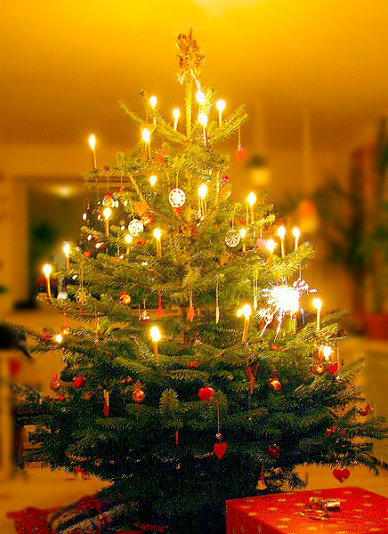 Call to Artists & Photographers – We want your Christmas Images for a Project – CLICK FOR DETAILS