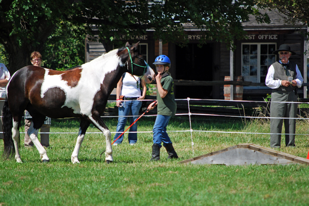 """Spirits in Unity  Column 14 and introduction by Garry """"Horsetalker"""" Meek"""