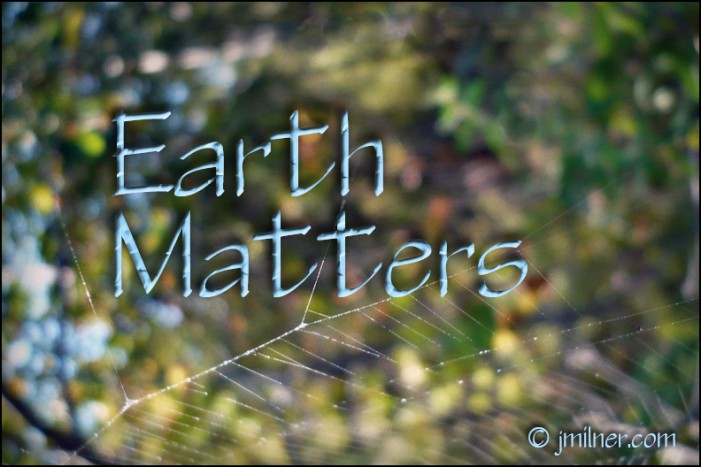 Earth Matters by Jacqueline Milner – Want to get a jump on Spring this Fall?