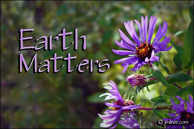 Earth Matters by Jacqueline Milner – Do you Co-Flourish?  September 26, 2012