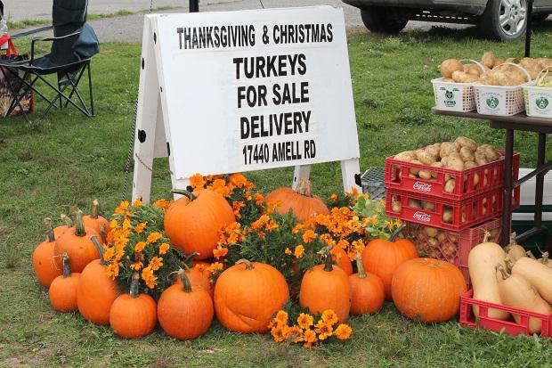 Long Sault Farmer's Market Season Finale by Reg Coffey – October 6, 2012