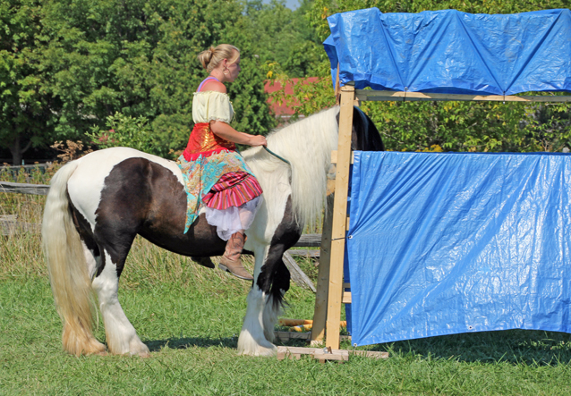 """Spirits in Unity  Column 21 – Part 8 Confidence and introduction by Garry """"Horsetalker"""" Meek"""