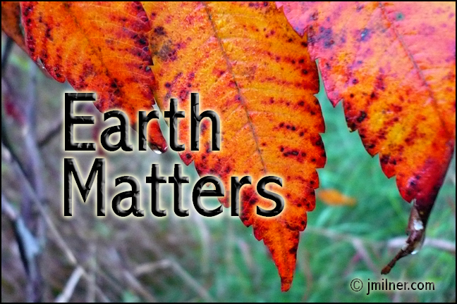 Earth Matters by Jacqueline Milner – Fall Colours & Foods October 5, 2012