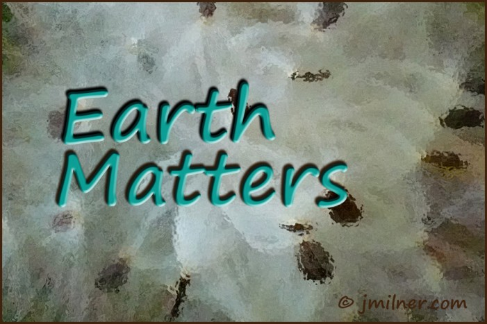 Earth Matters by Jacqueline Milner – The passive solar experiment results.
