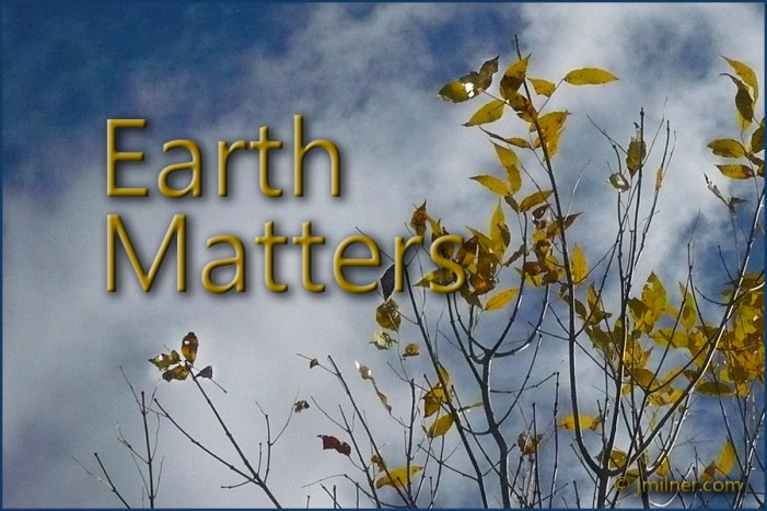 Earth Matters by Jacqueline Milner – First Snow Energy Saving Tips for the Winter