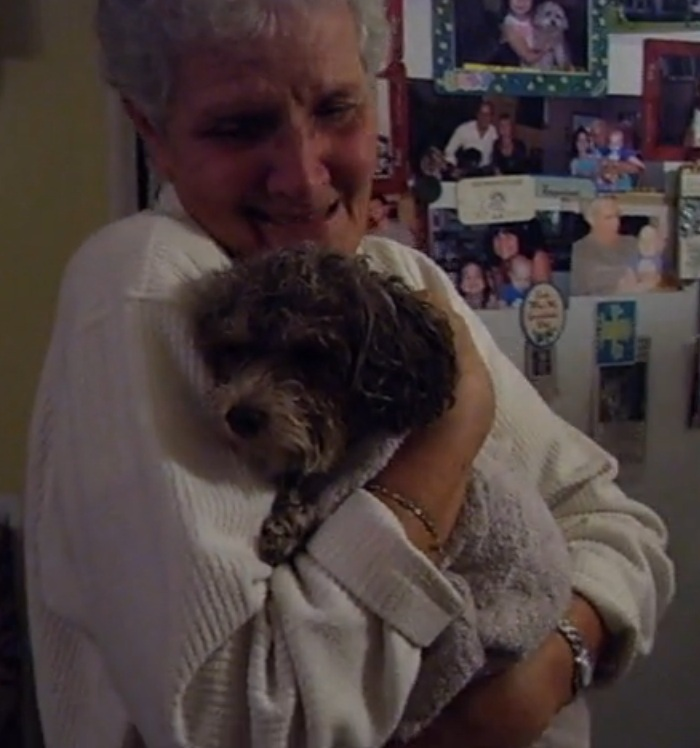 Maggie the Poodle is Found Safe & Sound in Cornwall Ontario! October 19, 2012