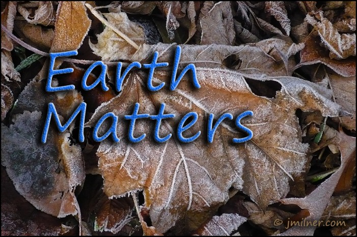What the eff is going on???  Earth Matters by Jacqueline Milner – November 21, 2012