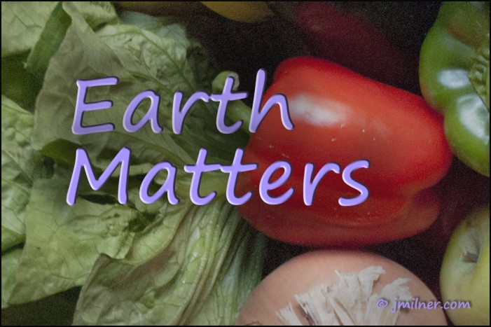 Earth Matters by Jacqueline Milner – Community Green Boxes  Make Great Holiday Gifts!