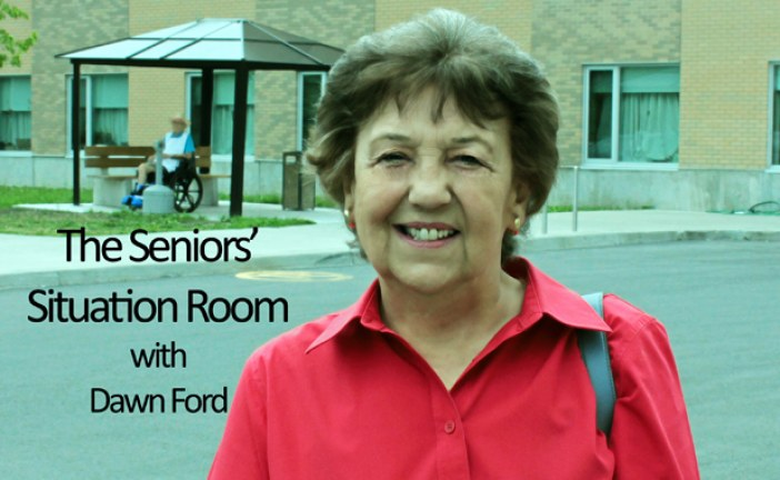 Seniors Situation by Dawn Ford – Seeing Eye Dogs, Cats, Hospice Needs & Why No Bus Service on Christmas in Cornwall?