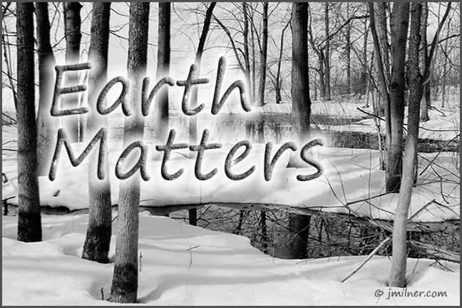 Earth Matters by Jacqueline Milner – A Forest Retreat May Just Be What The Doctor Orders!
