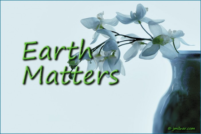 Earth Matters by Jacqueline Milner – What is Idle No More? January 14, 2013
