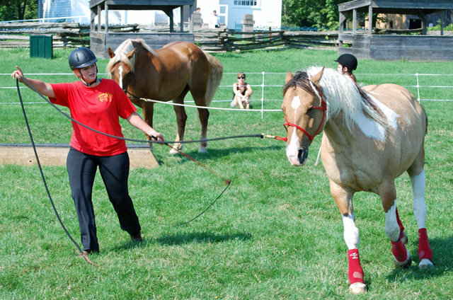 "Spirits in Unity Column 32 – Emotional Fitness – Responsibility by Garry ""Horsetalker"" Meek"