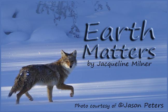 EarthMattersTitle_02_04_13DSC03109r