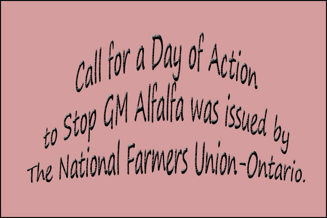 A call for a Day of Action to Stop GM Alfalfa was issued by the National Farmers Union-Ontario.