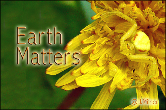 EarthMattersTitleP1010447_06_10_12