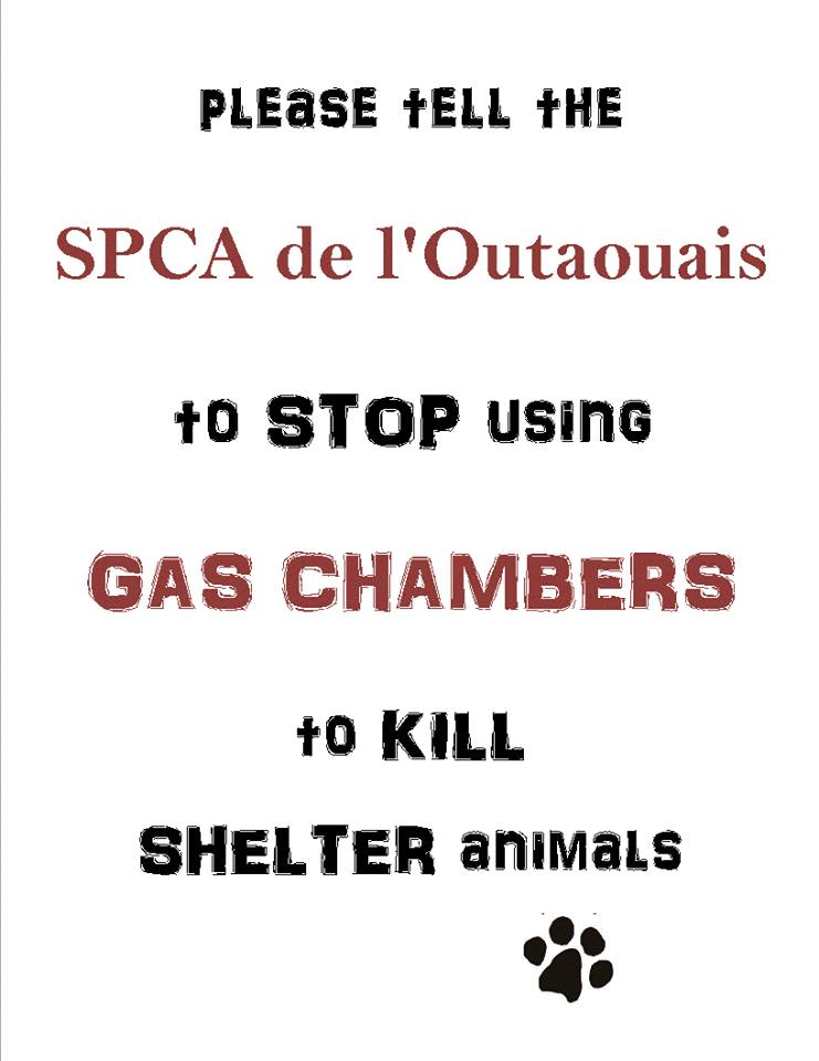 outeouis gas chamber