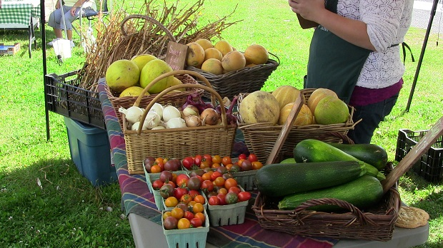 Sweet Melons at the Long Sault Farmers Market by Reg Coffey, August24, 2013