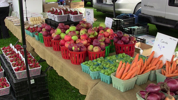 Only Two More Fridays Left for the Long Sault Farmer's Market by Reg Coffey – September 28, 2013