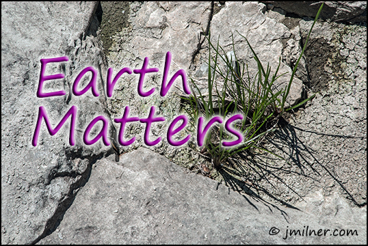 Earth Matters by Jacqueline Milner Where did my meal come from?