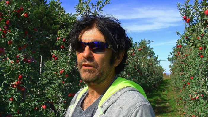 Verger Maniadakis – All Organic & Bio Dynamic Award Winning Ice Wine & Apples, Pears & Cider!  VIDEO
