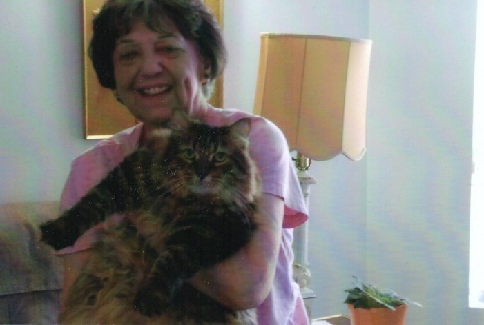 Seniors Situation Room by Dawn Ford – Tiger By the Tail Likes Celery