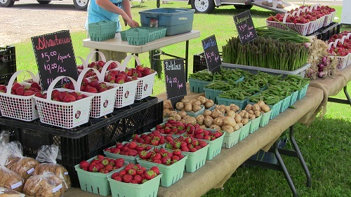 Great Day for A Farmer's Market – Friday, June 20th, 2014 by Reg Coffey