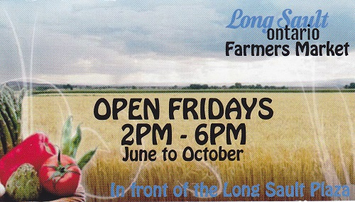 Opening Day at Long Sault Farmer's Market by Reg Coffey