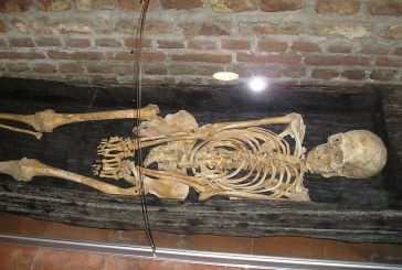 Elections and The Vote 2014 – Skeletons in the Closets & Why Voting Is Important!  by Garden Girl – Sept 24, 2014