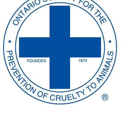 Bad Politics Again Hit SD&G OSPCA as Fundraiser Turnout Falls #EPICFAIL 092418