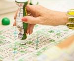 bingo-green-dauber