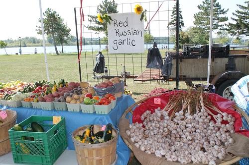 1st Annual Eastern Ontario Garlic Festival A Hit by Reg Coffey