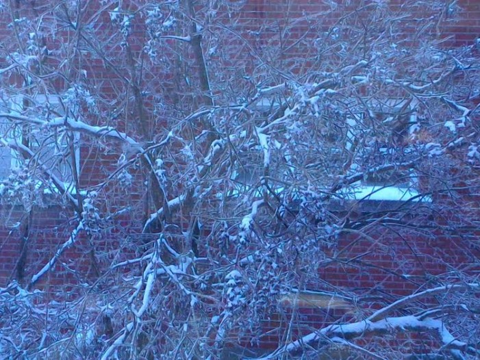 Mini Ice Storm Knocks Off Power Overnight in Cornwall Ontario Ottawa Sets Snow Record FEB 17, 2016