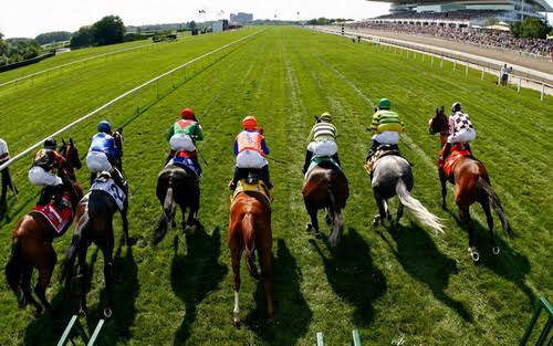 Tips on Betting on Horse Racing Online DEC 12, 2016