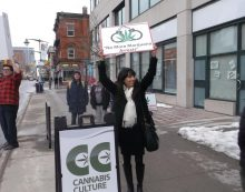 Princess of Pot Jodie Emery on Parliament Hill – Stop Marijuana Arrests.  By Roy Berger FEB 24, 2017