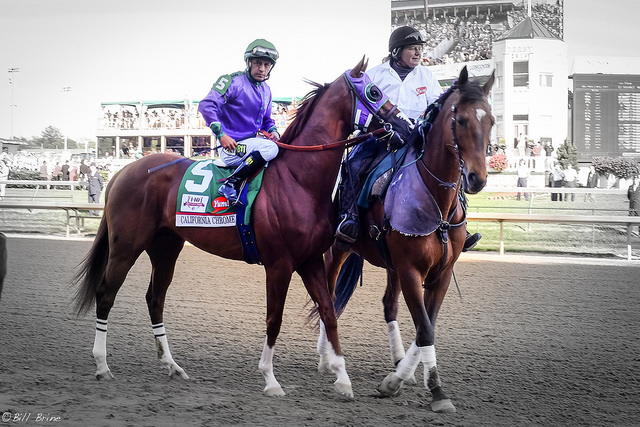 How Canadian Horse Racing Ranks Against the Rest of the World MARCH 7, 2017