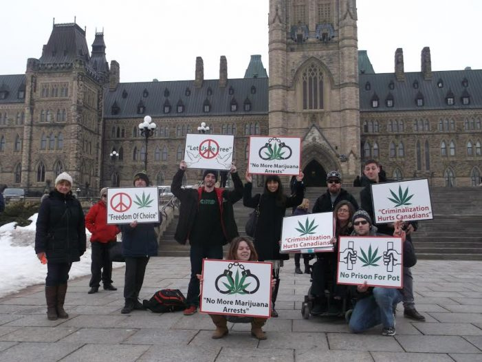 Dancing with the Liberal Insider Marijuana Czars by Roy Berger MARCH 12, 2017