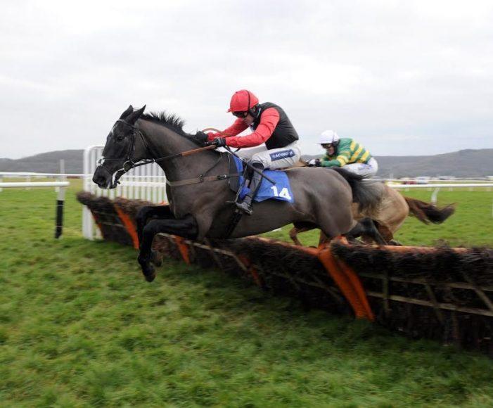 World Of Horse Racing