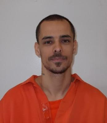 FEDERAL INMATE WANTED Elliott Sullivan TORONTO KINGSTON April 27, 2017